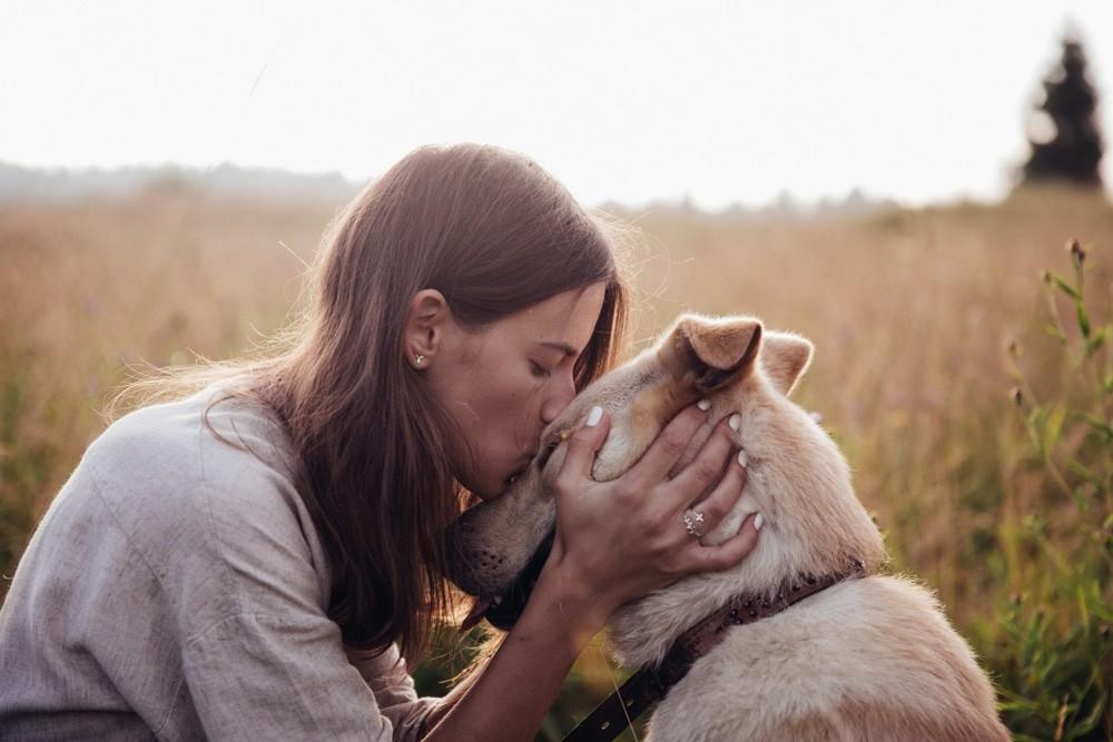 Animals & Grief by Judy Zimet